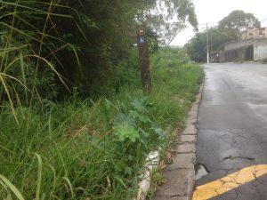 O ponto de ônibus não conta com nenhuma acessibilidade