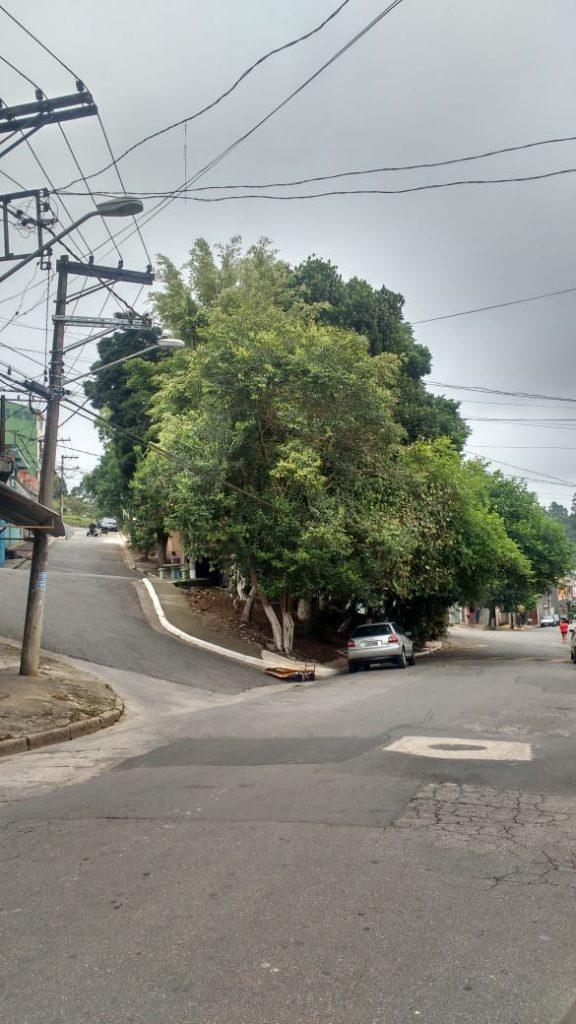 Rua Adolfo Appia